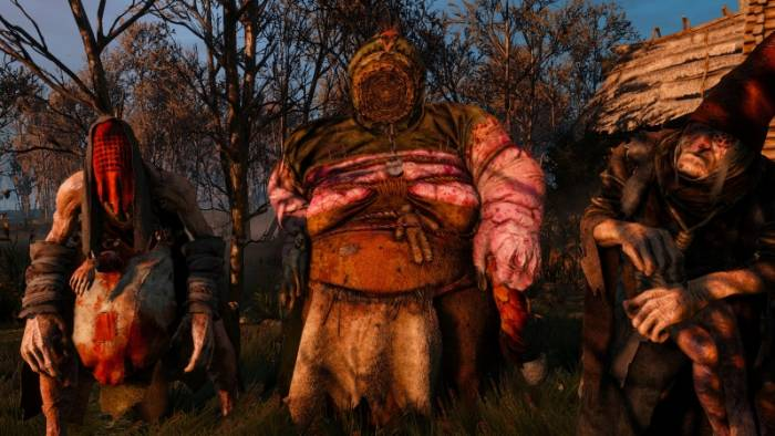 Witcher 3 Crones
