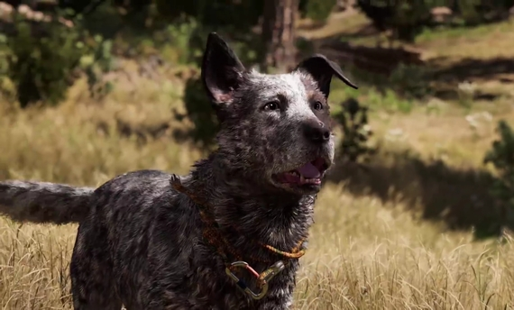 far cry 5 news featured