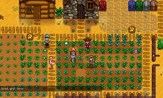 stardew valley news featured