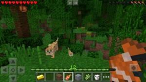 Minecraft game graphic