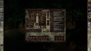 Inventory in Icewind Dale 1