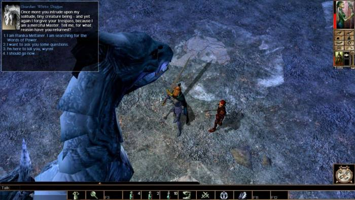Neverwinter Nights game