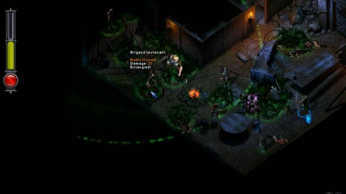 Temple of Elemental Evil PC