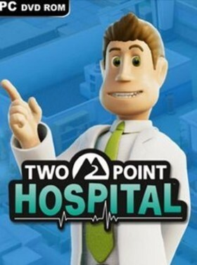 Two Point Hospital cover box