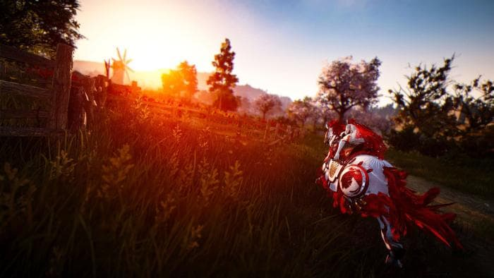 Black Desert Sunrise