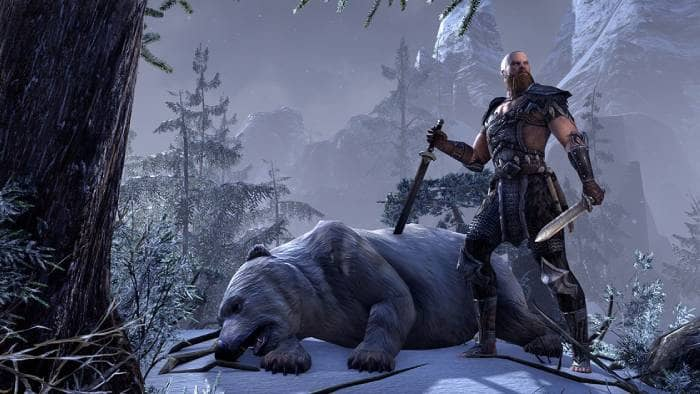 The Elder Scrolls Online - gameplay